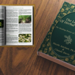 The Lost Book of Herbal Remedies picture